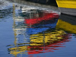 Princeton Photo Workshop: Mastering Color in Photography: Theory, Practice, Critique