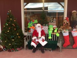 Kick Off the Holiday Season Weekend at Terhune Orchards