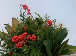 Decorative Holiday Centerpiece Workshop