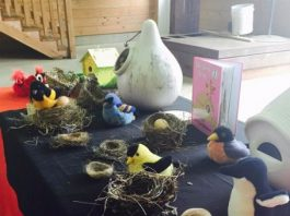 Read & Explore: Birds, Nesting & Birdhouses