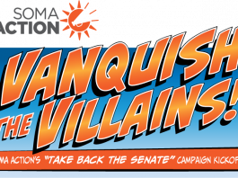 Vanquish the Villains - Flip the Senate