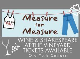 Shakespeare At The Vineyard